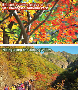 Brilliant autumn foliage of Mt. Juwangsan National Park / Hiking along the Jubang Valley