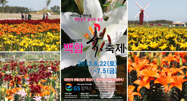 Taean-gun South Korea  City new picture : credit taean f festival promotion committee this summer the taean ...