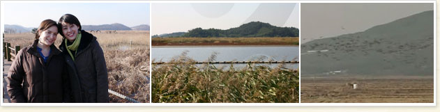 The Wetlands of Sihwaho Lake
