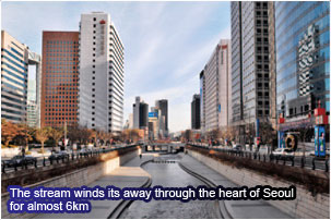The stream winds its away through the heart of Seoul for almost 6km