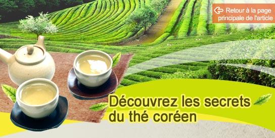 Découvrez les secrets du thé coréen