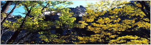 Voyage en Coree du Nord: Geumgangsan