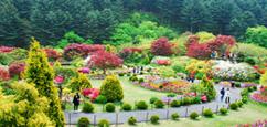 Corée Sud Restauran : Gyeonggi-do