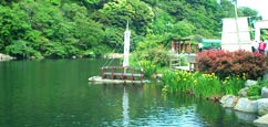 Corée Sud Restauran : Jeju