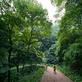 韩国安全又健康的疗养度假景区推荐!