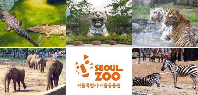 首尔大公园动物园庆百年换新名