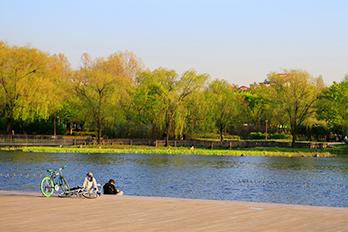 Pyeonghwa Park