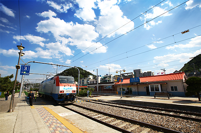 Mugunghwa train passing entering to Jeongdongjin Station