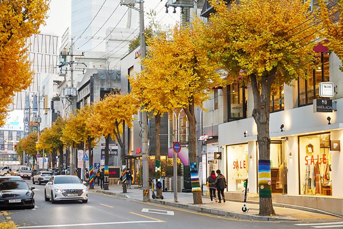 Шопинг в уникальных тематических магазинах Кореи_image03