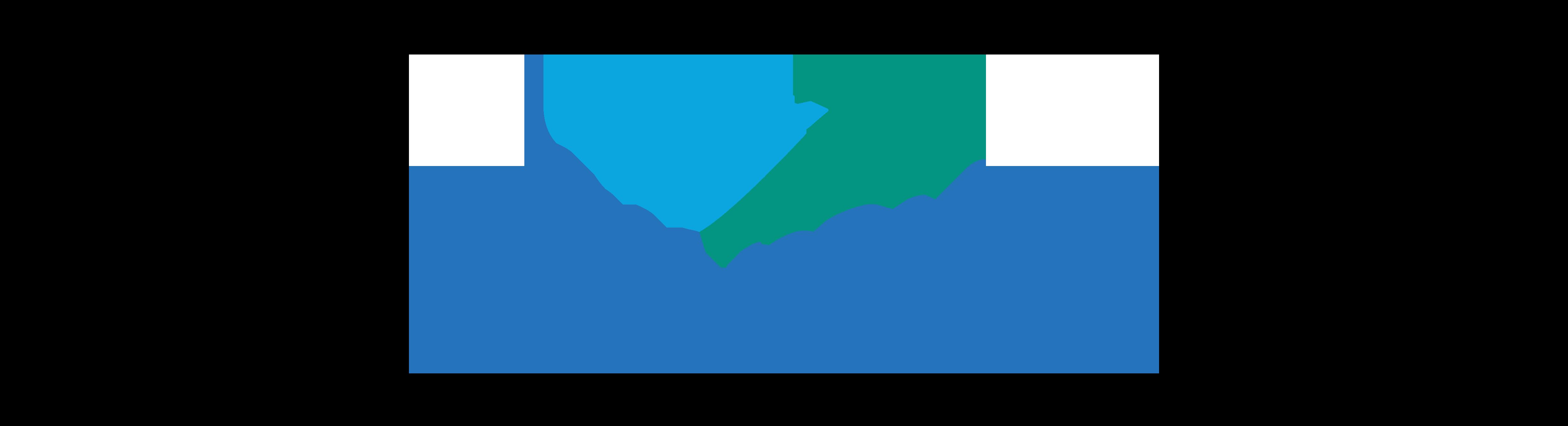 CEBU PACIFIC Logo