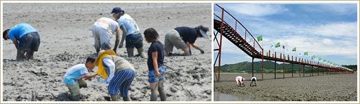 Island Mudflats Festival