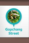 Gopchang Street