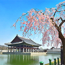 Special Opening of Gyeonghoeru Pavilion Starting this April!