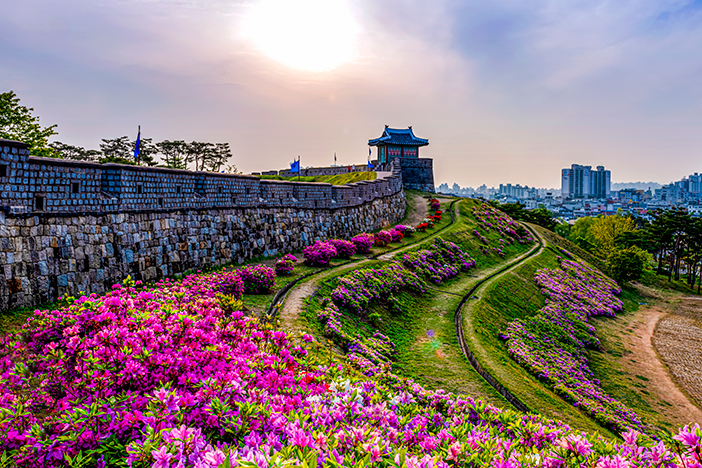Two Days of Cultural Fun in Suwon & Yongin