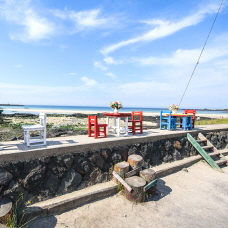 Top 10 Ways to Enjoy Jeju Island in March!