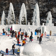 Beat the Cold by Enjoying Winter Festivals!