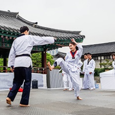 Come Learn Taekwondo at Namsangol Hanok Village!