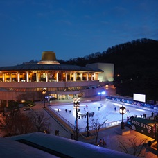 Ice Skating Rinks in Seoul