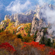 Fall Foliage to Start from Seoraksan Mountain on September 27