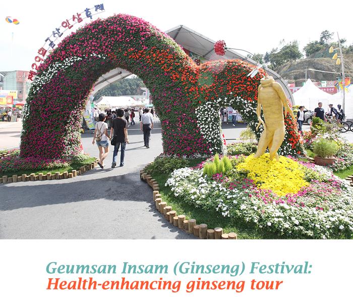 Geumsan Insam (Ginseng) Festival: Health-enhancing ginseng tour