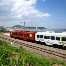 KORAIL Tourist Trains Reopen with Discount