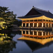 Starlight Tour at Gyeongbokgung Palace Reservation Opens Aug. 19