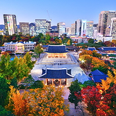 Last Chance for Fall Foliage at Seoul's Royal Palaces
