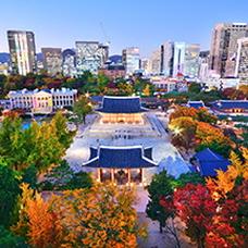 Last Chance for Fall Foliage at Seoul's Royal Palaces
