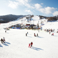 Ski Season Starts with the Opening of Ski Resorts Throughout Korea!