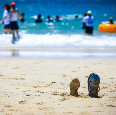 Famous West Coast Attraction, Daecheon Beach Opens for Summer!