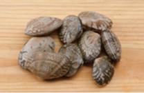10 clams = 50g
