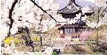 Korea's Four Seasons Image