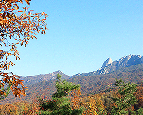 Korea's Mountains Image