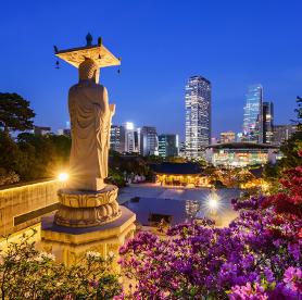 韓国の幻想的な燃灯見物