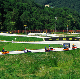 A thrilling race – Luge hills