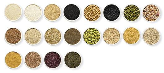 穀類と豆類_イメージ