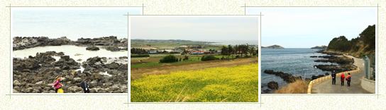 12コース 武陵2里生態学校~竜水補(17.6キロ/ 5-6時間所要)