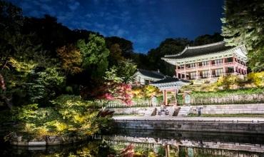夜の王宮を愉しむ 「2021年昌徳宮月明り紀行」開催中