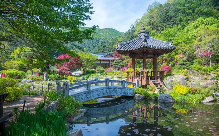 【京畿道】自然に親しみ、アートに触れる五感満足コース(1泊2日)