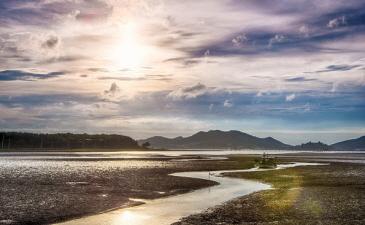 生物多様性のための重要な生息地、「韓国の干潟」が世界自然遺産に登録