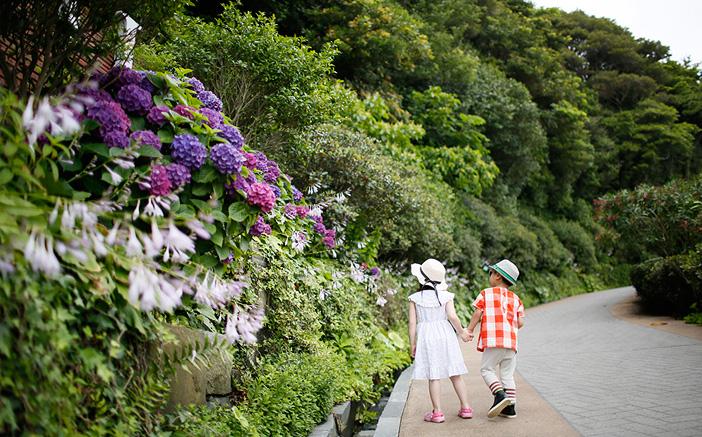 【慶尚南道】潮風に吹かれながらめぐる、統営&巨済の絶景観賞コース(1泊2日)