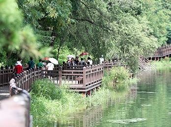 堤川義林池と堤林