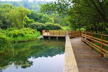 蘭芝川公園池