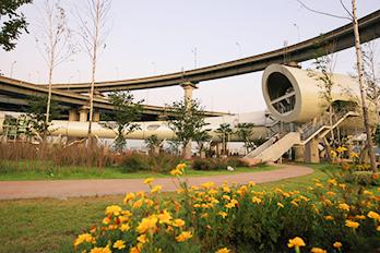 トゥクソム漢江公園の尺取虫