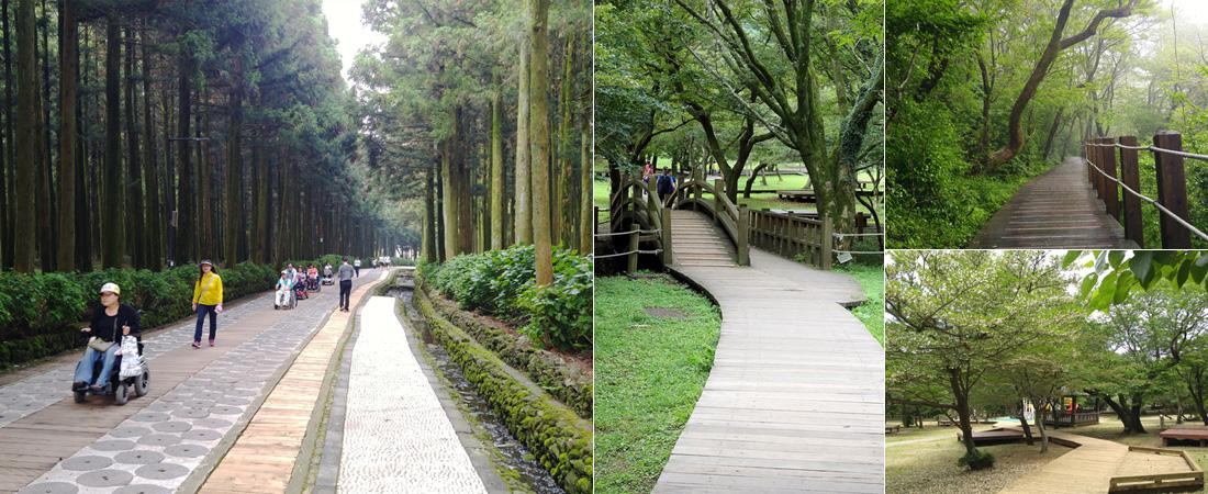 좌)제주절물자연휴양림의 평편한 길에서 휠체어를 타고 가는 사람들. 중)나무데크길로 이어지는 아치형 다리 모습. 우1)난간이 설치된 나무데크길 우2)나무데크길 중간에 마련된 쉼터