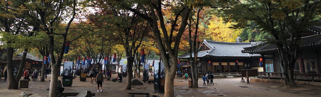 나무와 한옥 기와에 청사초롱이 매달려 있고 많은 사람들이 지나가고 있다