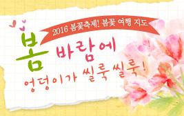 """2016 봄꽃축제! 봄꽃 여행 지도 """"봄바람에 엉덩이가 씰룩 씰룩!"""" 사진"""
