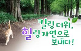 킬링 더위, 힐링 자연으로 보내다! 사진