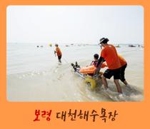 2016 열린관광지-보령 대천 해수욕장