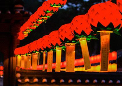 Фестиваль лотосовых фонарей в Тхондоса